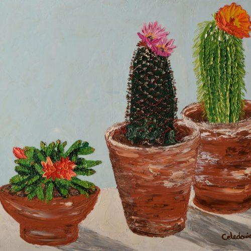 cuadros al oleo de flores 087