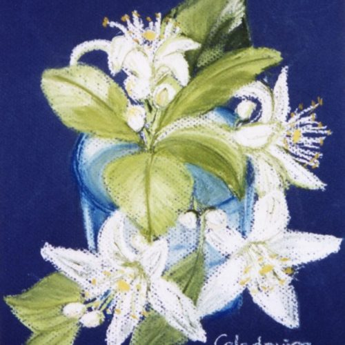 cuadros pintados a pastel azahar 097
